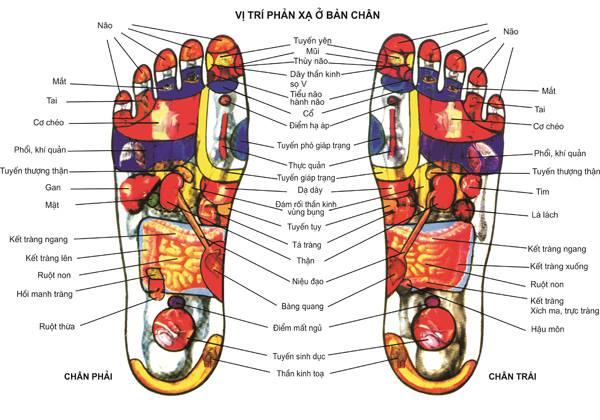 massage chân sức khỏe